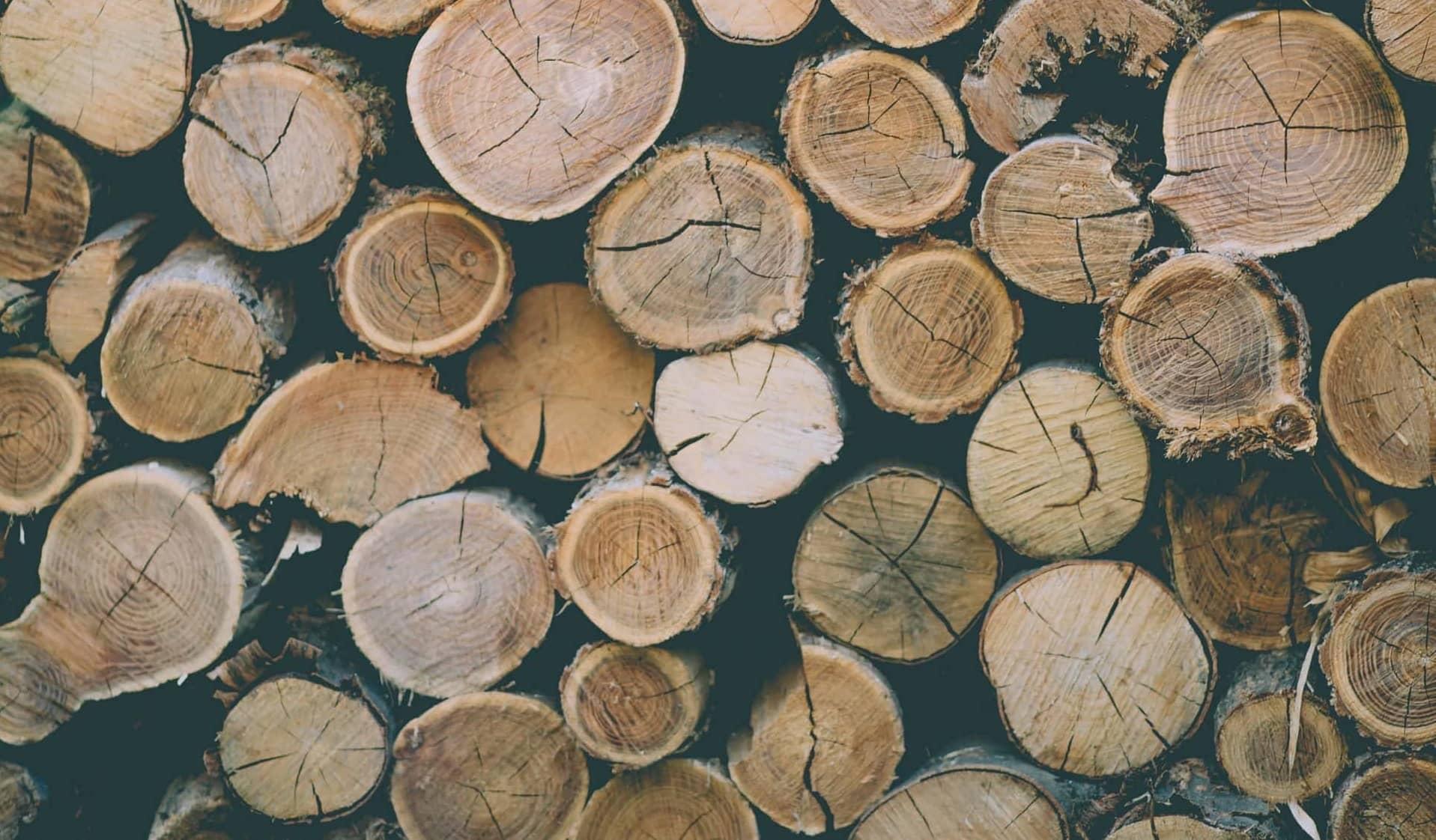 Foto Waarop Hardhouten Boomstammen Worden Afgebeeld